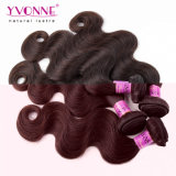 Yvonne 페루 Remy 머리 바디 파 브라운 색깔 머리