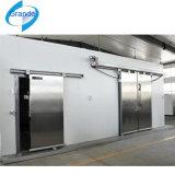 Camminata nella cella frigorifera, attrezzatura di refrigerazione, stanza di raffreddamento