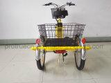 리튬 건전지 농부를 위한 전기 화물 자전거
