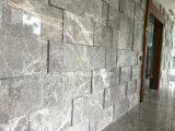 Het natuurlijke Behandelen van de Muur van de Steen met het Oppoetsen Oppervlakte