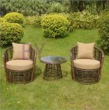 Muebles al aire libre huecos de alto grado de la rota del PE del balcón del jardín