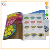 Impression professionnelle de catalogue de couleur de qualité