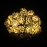 Indicatori luminosi del gruppo di terminali LED della lanterna della Rosa della decorazione di natale
