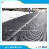 Scheda impermeabile di drenaggio della fossetta del tetto verde di plastica HDPE/HIPS