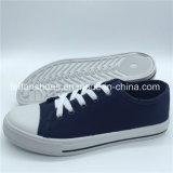 Schoenen van het Schoeisel van de Vrije tijd van de Schoenen van het Canvas van Hotsale de Klassieke voor Vrouwen (ZL1017-21)