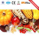 Desidratador de Vegetable&Fruit para a baga/morango/gengibre/cebola/cenoura/alho