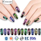 Commerce de gros flocons Chromashift Pigment multicolore pour nail art