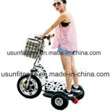 bici eléctrica 3wheels para el adulto