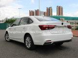 De Chinese Beroemde Elektrische Auto van de Goede Kwaliteit van het Merk