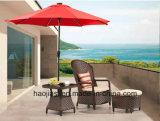 屋外の/Rattan/庭/テラス/ホテルの家具の藤のラウンジチェア及び側面表(HS 1628C及びHS 1629ET& 1628OT)
