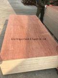 Binatngor se enfrentan a la madera contrachapada / el alto grado de contrachapado marino