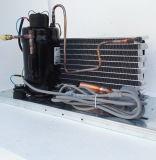 小型エアコンおよび除湿器の製氷機の自動販売機の冷水装置のためのPurswave 2/5HPのAir-Cooled圧縮機の凝縮の単位