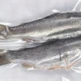 Máquina de empaquetamiento al vacío de los pescados congelados de la carne