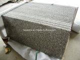 Scala di pietra naturale granito/del marmo per decorazione interna/esterna