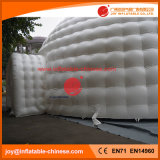 Piscine gonflable tente igloo1-103 blanc pour l'exposition (tente1-103)