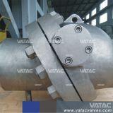 Ferro duttile/ghisa Pn16 che inclina la valvola di ritenuta della cialda del disco