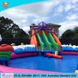 Spel van het Park van het Water van de kwaliteit het Reuze Opblaasbare met de Norm van Australië