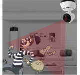 P2p 720p HD 1.0MP Red Profesional de la cámara WiFi IP Megapixel