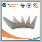 Les bandes de matières premières de carbure de tungstène