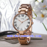 Montres-bracelet de service d'ODM de montre d'alliage (WY-025D)