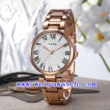 Legierungs-Uhr ODM-Service-Armbanduhren (WY-025D)