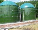 2*800m3 Digestores Cstr Biogás
