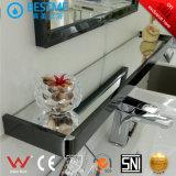 Governo di stanza da bagno dell'acciaio inossidabile dalla Cina (BY-B6026)