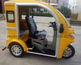 tricycle Handicapped du passager 125cc pour la visite touristique