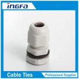 Presse-étoupe de câble en laiton de qualité avec Pg7 nickelé Pg16