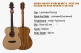 Гитара Taylor GS горячего размера перемещения сбывания популярная миниая акустическая
