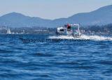 Liya che pesca prezzo gonfiabile della barca della nervatura delle barche 5.8m
