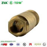 Filter-Messingfuss-Rückschlagventil für Kraftstoff-Zufuhr-Pumpe (TDW-CP)