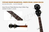 Банджо высокого качества 5-String тавра Китая Aiersi (BJ005-24)
