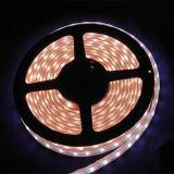 Streifen-Seil-Licht des Unterwasser-DMX Steuerflexibles LED