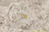Tegels van de Steen van de Plakken van de dageraad de Grijze Marmeren Natuurlijke voor Muur/Vloer/Countertop