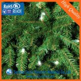 0.5mm ont gravé le film rigide vert d'arbre de Noël de PVC
