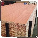Contre-plaqué rouge de cc de Bb de dos de face de bois dur pour l'emballage