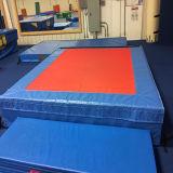 De goedkope Snelle Landende Matten van de Goede Kwaliteit van de Levering voor Gymnastiek, Praktijk, Vechtsporten, het Worstelen, MMA, Effect en Opleiding
