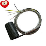 Riscaldatore di bobina elettrico (DXCO-009)