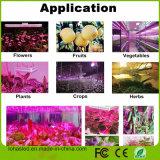 Luz hidropónica do crescimento de planta do espetro cheio
