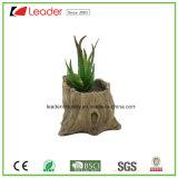 Potenciômetros decorativos Textured de madeira redondos novos do plantador da flor da planta do cimento