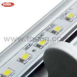 Tubo chiaro di illuminazione LED LED T8 del tubo di illuminazione LED del LED