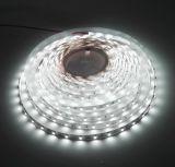 Certificación de la UL (E364593), 300 pies flexibles de la luz de tira del LED SMD 3528 16.4 (5 contadores)