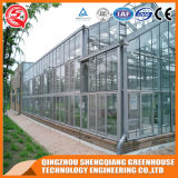 Serre van het Glas van de landbouw de Holle Aangemaakte met KoelSysteem