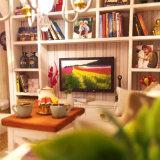 Chambre de poupée en bois avec le jouet de meubles