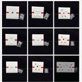 Dell'ABS 2 interruttori di rame 1way o 2way (WS621) del gruppo del materiale