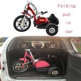 Motorino elettrico facente un giro turistico elettrico piegante 500W di mobilità del veicolo 3-Wheel