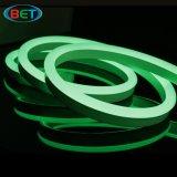 indicatore luminoso flessibile del neon LED di 12V&24V 5050RGB per la decorazione esterna & dell'interno