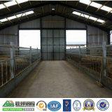 돼지 농장 강철 구조물 집