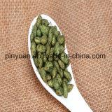 Семена подсолнуха оценивают/стержени солнцецвета жарить в духовке Seaweed покрынные флейвором